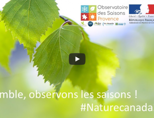 Second Webinar of l'Observatoire des Saisons